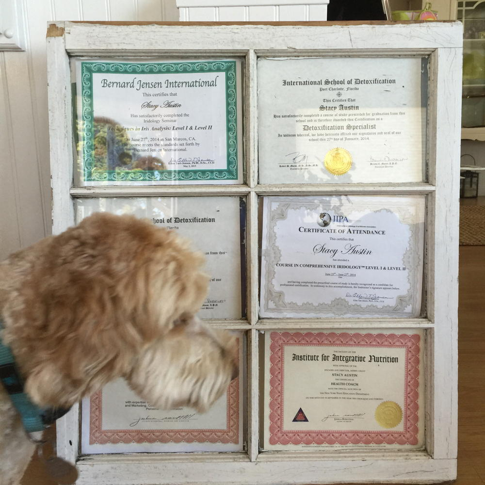 Stacy's certifications